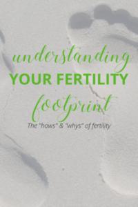 Understanding Fertility | Virtual Expectations